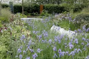 Gartenoasen-Natur-MG_8506